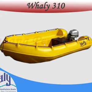 Perahu Whaly 310