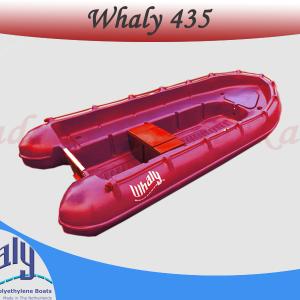 Perahu Whaly 435