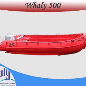 Perahu Whaly 500